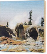 Grotto Geyser Yellowstone Np Wood Print