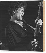 Guitarist Lyndsay Buckingham Wood Print