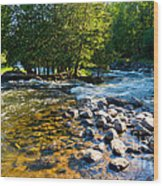 Gull River Wood Print