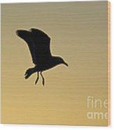 Gull Silhouette Wood Print