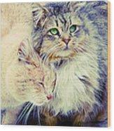 Gutter Kitties Seven Wood Print
