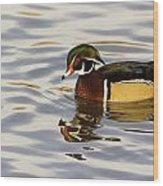Handsome Wood Duck Wood Print