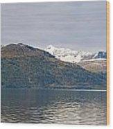 Hanging Glaciers And Chugach Mountiains Wood Print