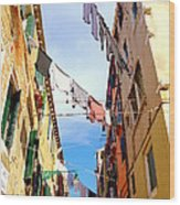 Hanging In Venice Wood Print