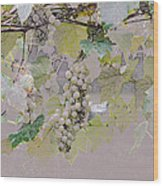 Hanging Thompson Grapes Sultana Wood Print