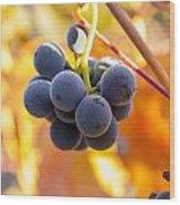 Harvest Gratitude Wood Print