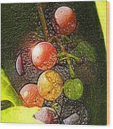 Harvest Time Wood Print by Ron Regalado