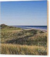 Head Of The Meadow Beach Wood Print