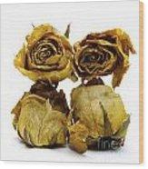 Heap Of Wilted Roses Wood Print by Bernard Jaubert