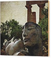 'hermanos' In The Valley Of The Temples Wood Print