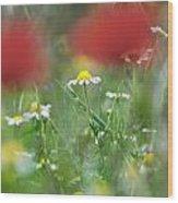 Hidden Flower Wood Print