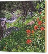 High Country Wildflowers 2 Wood Print