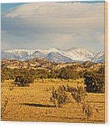 High Desert Plains Landscape Wood Print