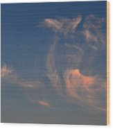 High In The Sky  Wood Print