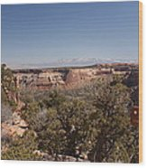 Hiking National Monument  Wood Print by Michael J Bauer