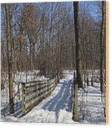 Hiking Trail Bridge With Shadows 3 Wood Print