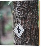 Hiking Trail Sign On The Forest Paths Wood Print