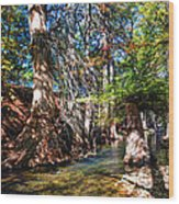 Hint Of Fall Wood Print