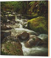 Hoh Stream Wood Print