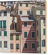 homes in Camogli Wood Print