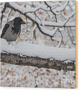 Hooded Crow First Snow Wood Print