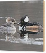Hooded Merganser Pair Crossed Wood Print