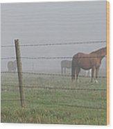 Horse Pasture Wood Print