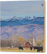 Hot Air Balloon Rocky Mountain County View Wood Print