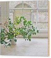 House Plant Wood Print