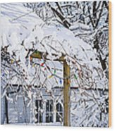 House Under Snow Wood Print by Elena Elisseeva
