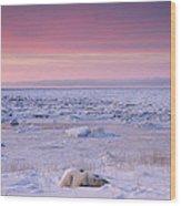 Hudson Bay Landscape Wood Print