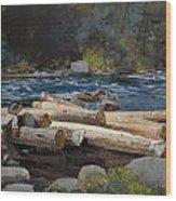 Hudson River Wood Print by Winslow Homer