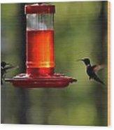 Hummingbirds 336 Wood Print