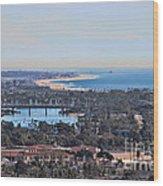 Huntington Beach View Wood Print