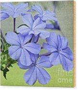 I Love Blue Flowers Wood Print