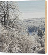 Ice Storm - 2013 Wood Print by Jim Walker