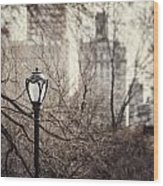 In The Shadow Of The Upper East Side  Wood Print