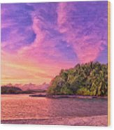 Indian Ocean Sunset Wood Print