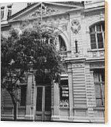 instituto superior de comercio eduardo frei montalva Santiago Chile Wood Print
