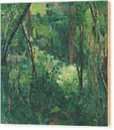 Interior Of A Forest Wood Print