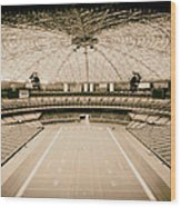 Interior Of The Old Astrodome Wood Print