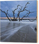 Into The Blue Wood Print by Debra and Dave Vanderlaan