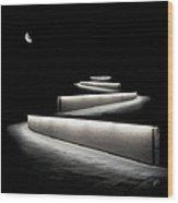Into The Night II Wood Print