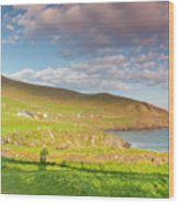 Ireland, County Kerry Slea Head Drive Wood Print