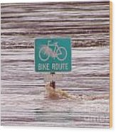 Ironic Street Sign  Wood Print