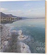 Israel Dead Sea Wood Print