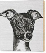 Italian Greyhound Wood Print