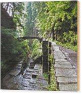 Ithaca Gorge Wood Print