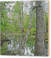 Jean Lafitte Swamp Wood Print