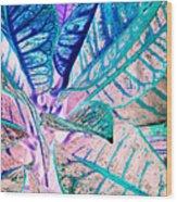 Jive  Wood Print